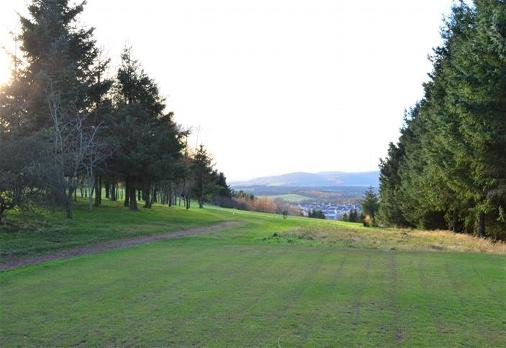 View from the 4th Tee down the tight avenue of trees