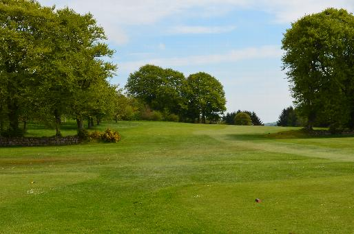 View from the 9th tee through the trees which shape the hole